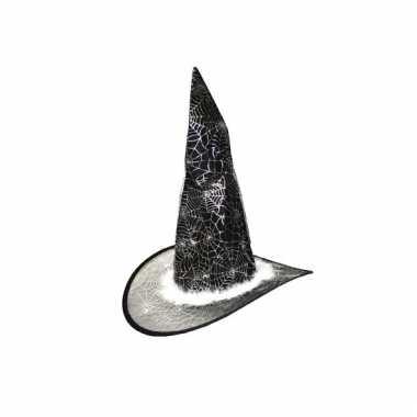 Zilveren heksenhoed voor kids