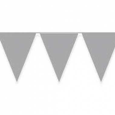 Zilveren vlaggenlijnen 10 meter