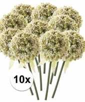 10 x witte sierui 70 cm kunstplant steelbloem