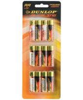 12 penlite dunlop batterijen aa