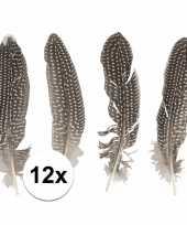 12x fazantenveren
