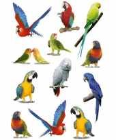 12x vogel stickers voor kinderen
