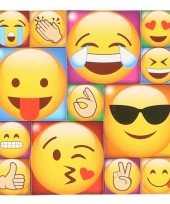 13x koelkast magneten emoji smileys emoticons type 2