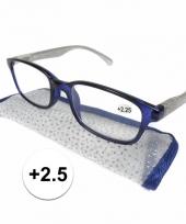 2 5 leesbrillen blauw met zilver