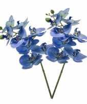 2 phaleanopsis vlinderorchidee kunstbloemen blauw 70 cm