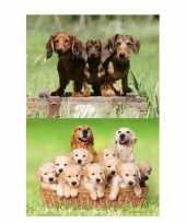 2 stuks 3d magneten met honden