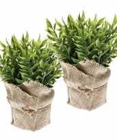 2 stuks nep muizendoorn kruiden planten groen in jute pot kunstplant