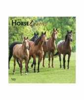 2019 kalender met paarden