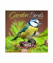 2019 kalender met vogels