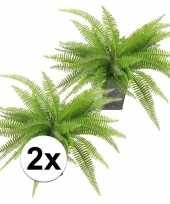 2x groene varen 33 cm in pot kunstplant