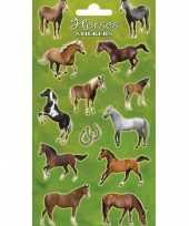 2x velletjes met paarden stickers