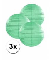 3 bolvormige lampionnen mint 25 cm