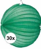 30 groene party lampionnen