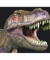 3d magneten met t rex dinosaurus