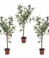 3x namaak olijfboom kunstplant kunstboom 65 cm in basic bloempot
