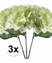 3x wit groen hortensia 28 cm kuntplant takken