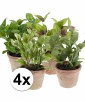 4 nep kruiden planten in oude terracotta potten kunstplant