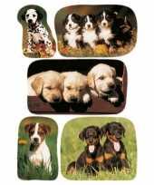 45x honden puppy stickertjes voor kinderen