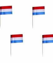 500x cocktailprikkers nederland