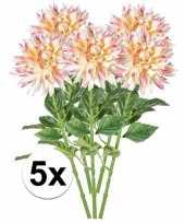 5x roze dahlia 70 cm kuntplant takken