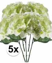 5x wit groen hortensia 28 cm kuntplant takken