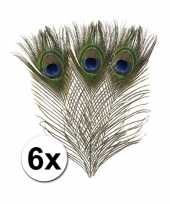 6x veren in pauwen kleuren 25 cm