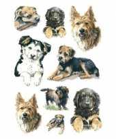 81x honden stickertjes voor kinderen