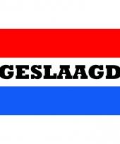 Afgestudeerd vlag met nederlandse kleuren 150x90 cm