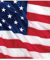 Amerika servetjes 16 stuks