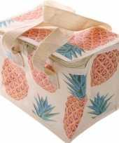 Ananas print blikjeskoeler koeltassen voor sixpack 6 blikken