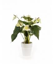 Anthurium kunstplant 47 cm wit in pot