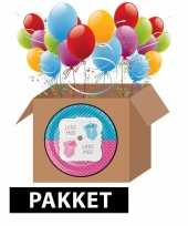 Baby geslacht onthulling feestpakket compleet