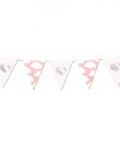 Babyshower roze vlaggenlijn met wolkjes