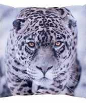 Bank kussentje panter jaguar woondecoratie cadeau