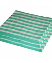 Bbq servetten mint kleur 25 stuks