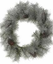 Besneeuwde kerstkrans 45 cm