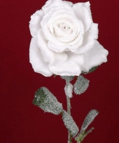 Besneeuwde kunst roos in het wit