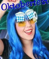 Blauw met wit geruite feestbril