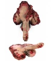 Bloederige halloween penissen