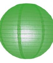 Bol lampion groen 25 cm