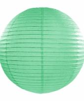 Bol lampion mint groen 35 cm