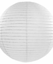 Bol lampion wit 50 cm 10071279
