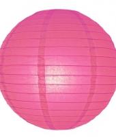 Bol lampionnen fuchsia roze 25 cm