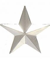 Brigade generaal 1 ster embleem