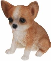 Bruin chihuahua honden beeldje 17 cm