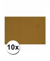 Bruin knutsel karton a4 10 stuks