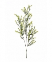 Buxus nep tak 72 cm groen