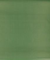 Cadeaupapier streep groen 70 x 200 cm