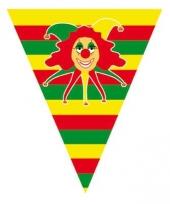 Carnaval vlaggenlijn limburg