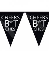 Cheers feestvlaggenlijn